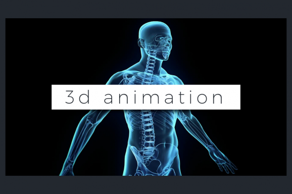 3D Custom Animation